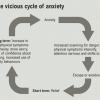 Ο μηχανισμός δράσης του Άγχους